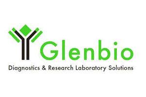glebino1